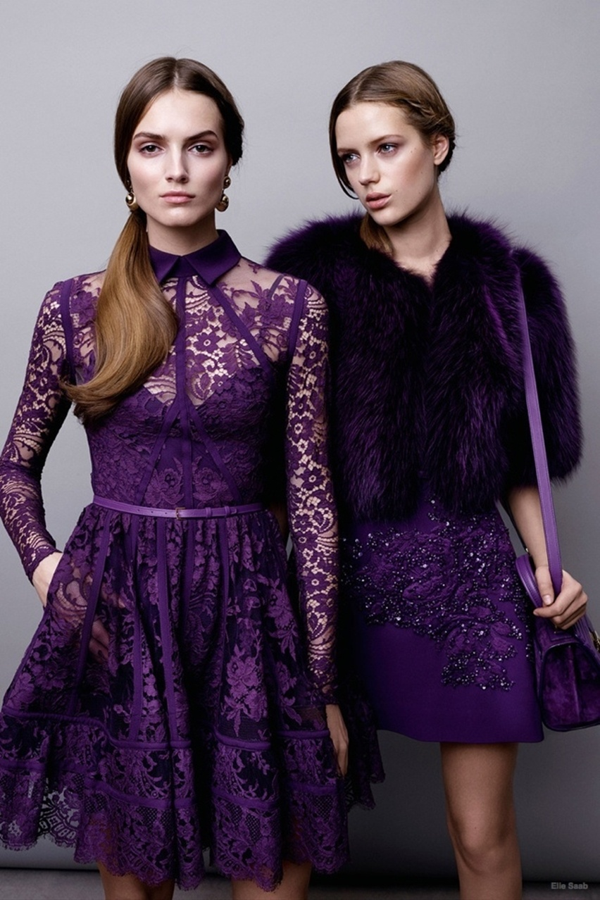 pre-fall 2015 Elie Saab  - cris vallias blog 21