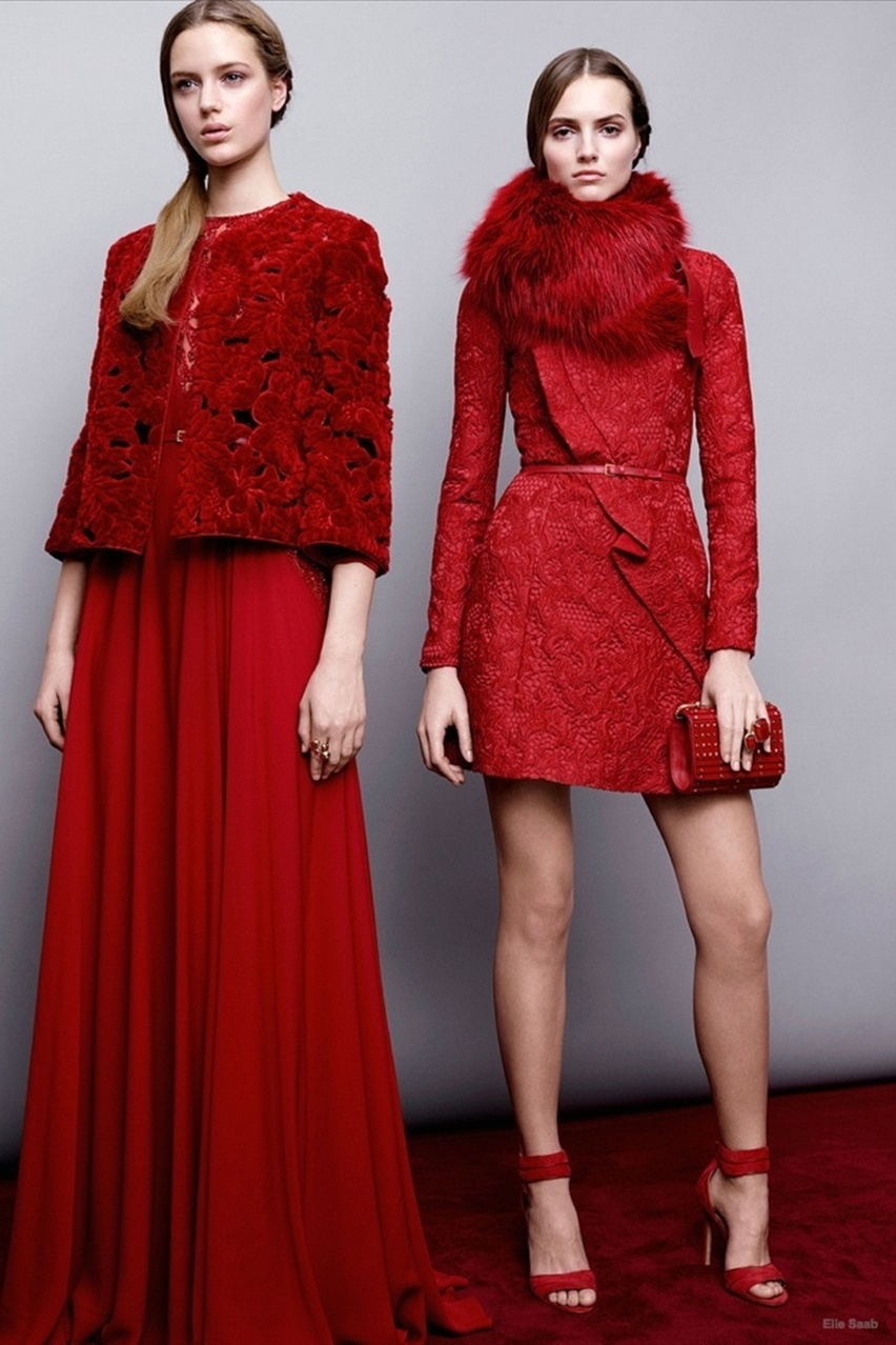 pre-fall 2015 Elie Saab  - cris vallias blog 27