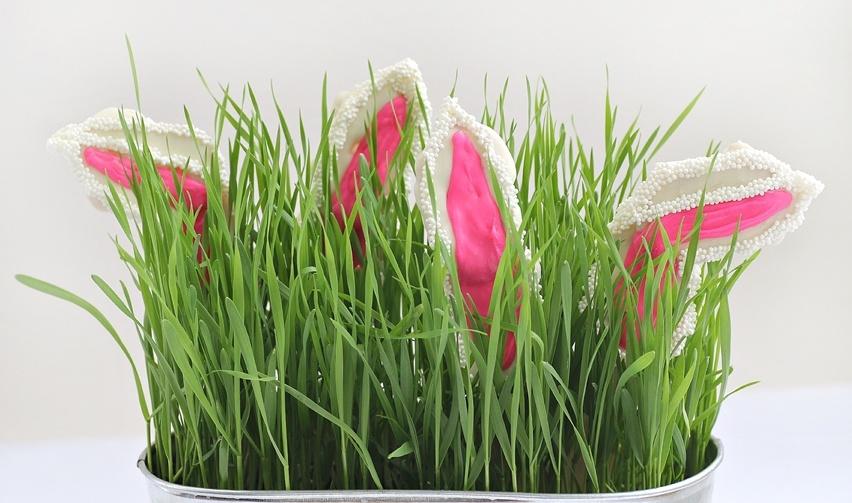 detalhes na decoração de páscoa - cris vallias blog 24